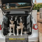Tailgate guard for dogs